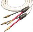 Straight Wire Serenade SC 10 ft